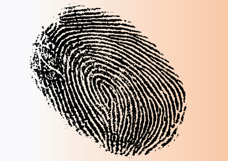 Black and White Vector Fingerprint - Very accurately scanned and traced ( Vector is transparent so it can be overlaid on other images, vectors etc.) Ilustração