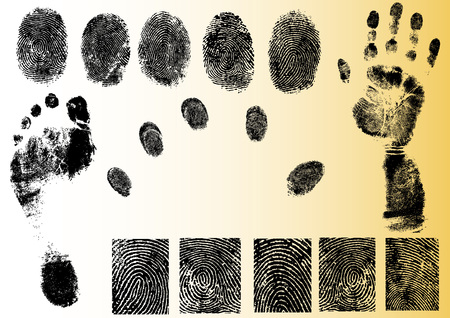 Black and White Vector Fingerprint and footprint elements - Very accurately scanned and traced ( Vectors are transparent so it can be overlaid on other images, vectors etc.) Banco de Imagens - 39423798