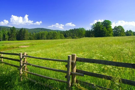 Photo of meadow with fence in sunny day. Stock Photo