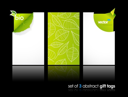 nature: Set of nature gift cards with reflection.  Illustration