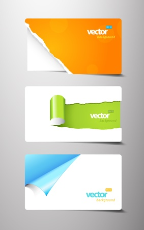 Set of gift cards with rolled teared corners.  Vector