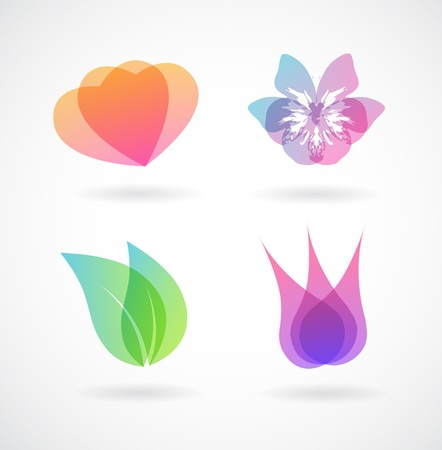 insect leaf: Set of colorful vector elements. Illustration