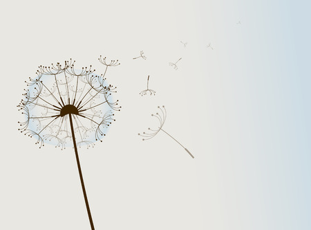 Flower in the wind. Vector