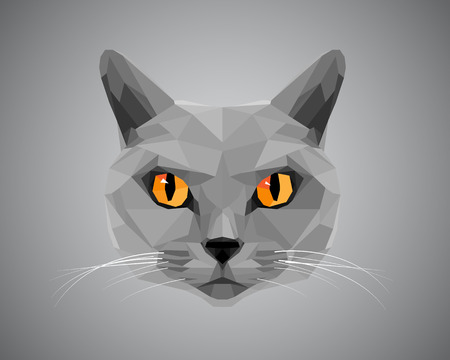 to polygons: Gato gris con los ojos de color naranja - estilo poligonal.
