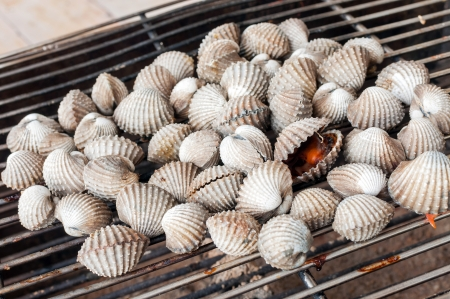 Cockles grill on sieve  Stock Photo