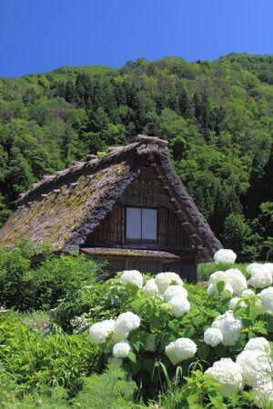 rafter: a house with a steep rafter roof