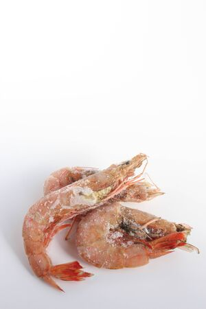 living things: shrimp Stock Photo