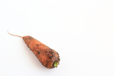 Carrots with soil