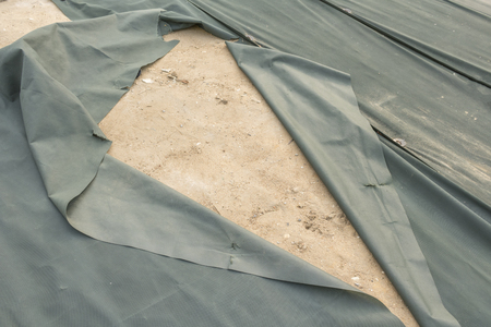 A herbicide sheet which was turned up with a strong wind Foto de archivo