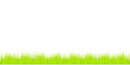 Grass. Vector Illustration