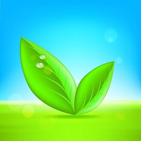 Green leaves. illustration on white background
