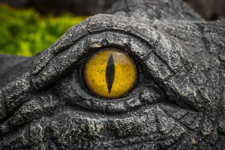 Gators staren met ronde gele ogen. Duivelse ogen.
