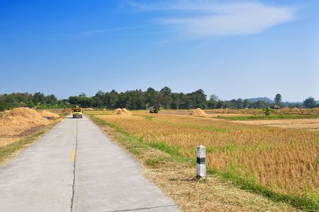 Across road through rice fields after harvest Stock Photo - 7771220