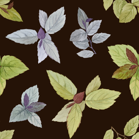 Seamless watercolor pattern. Drawn leaves for packaging, wallpaper, fabric. Design element. Watercolor painted leaves. Elegant leaves for art design.