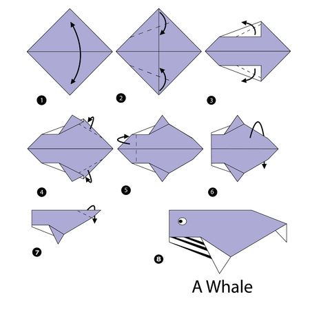 step by step instructions how to make origami whale. Illustration