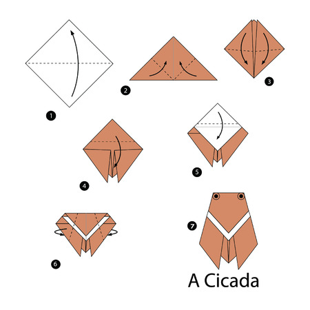 cicada: step by step instructions how to make origami cicada. Illustration