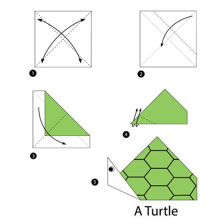 tortuga caricatura: instrucciones paso a paso cómo hacer origami tortuga.