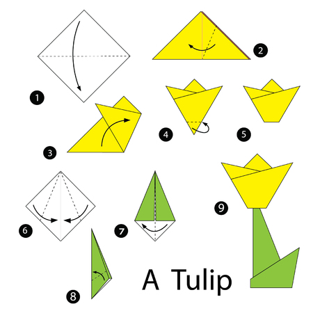 origami paper: step by step instructions how to make origami tulip.