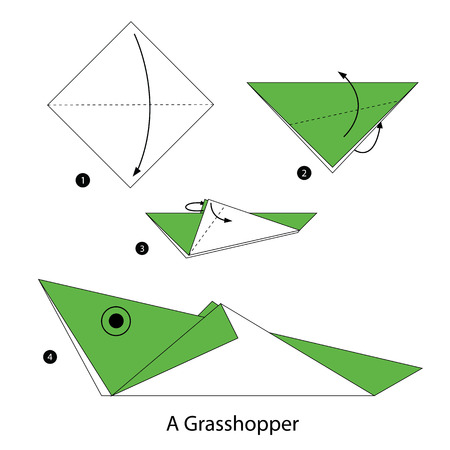 instructions: step by step instructions how to make origami A Grasshopper.