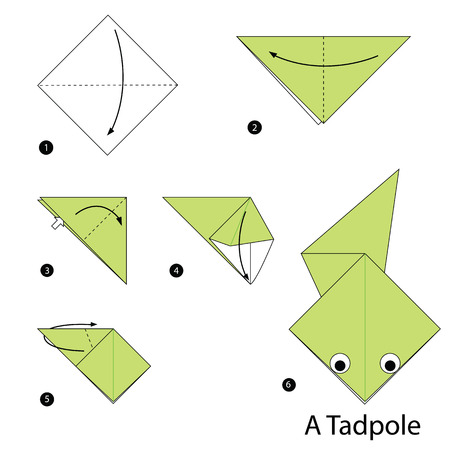 tadpole: step by step instructions how to make origami a Tadpole.
