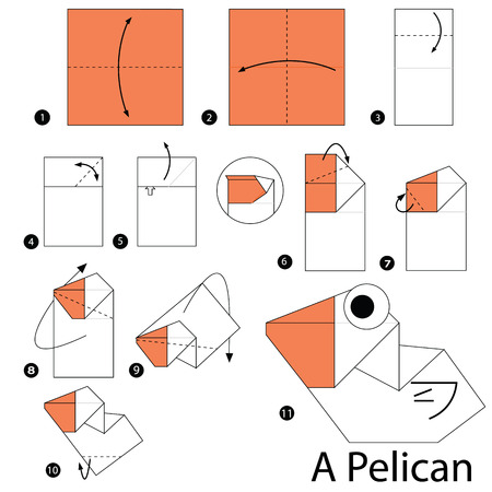 Step By Step Instructions How To Make Origami A Pelican Royalty Free
