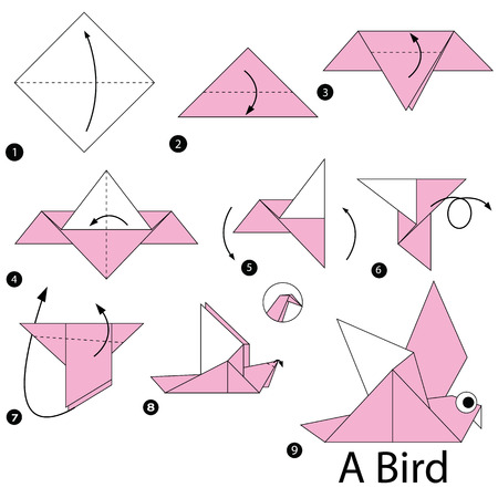 instrucciones: step by step instructions how to make origami A Bird.
