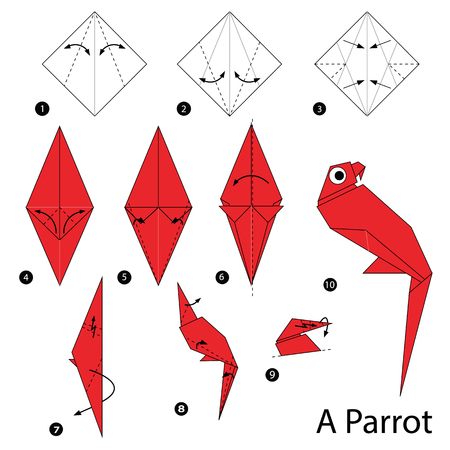 step by step instructions how to make origami A Parrot