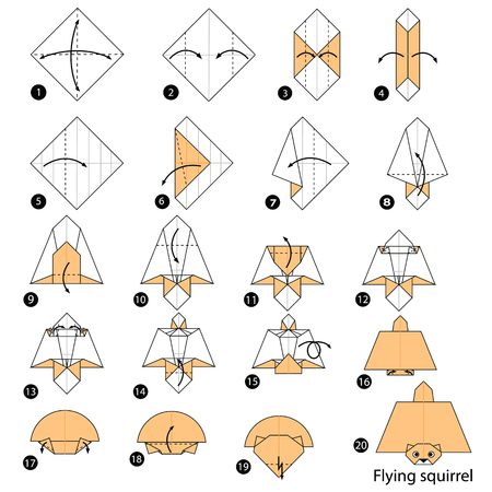 Step by step instructions how to make origami A Flying Squirrel Illustration