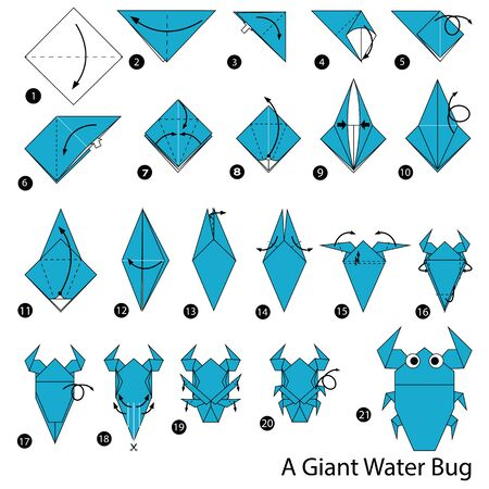 step by step instructions how to make origami A Giant Water Bug