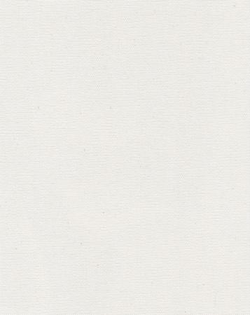 White canvas texture