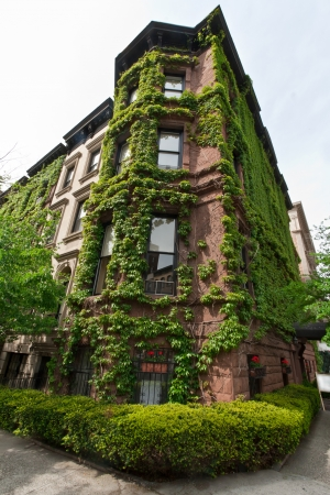 A nice building with plants all around in Madison Avenue, New York, USA