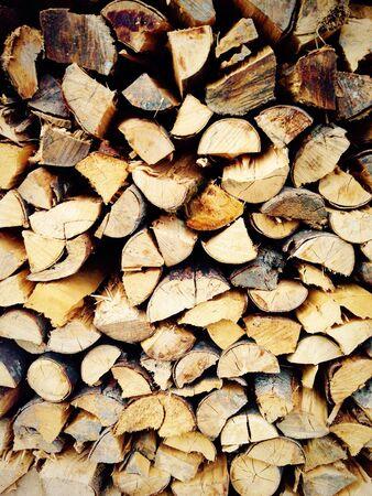 Log wood of tree material
