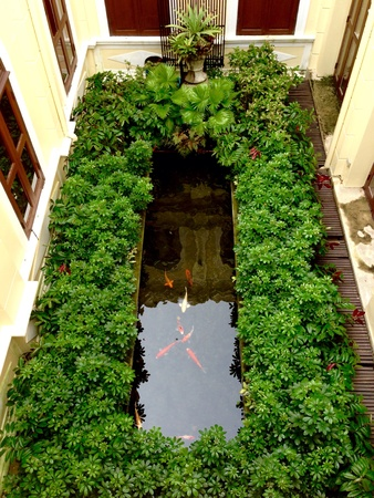 courtyard: Fishpond and garden in courtyard