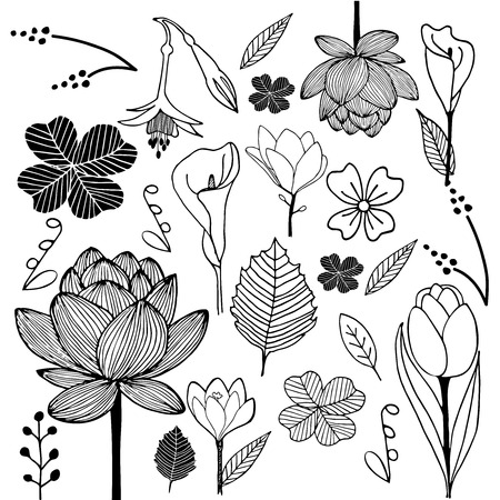 flower and leaf hand drawn sketch doodle black and white illustration Vector