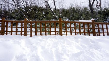 Pasarela de nieve y barandilla de madera en el bosque Noboribetsu onsen nieve de invierno parque nacional en Jigokudani, Hokkaido, Japón Foto de archivo - 72059888