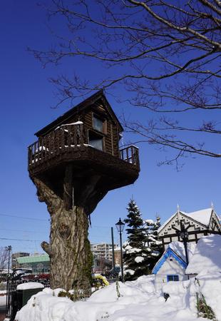 RBol de la arquitectura de la casa de nieve de invierno en Hokkaido, Japón Foto de archivo - 75215199
