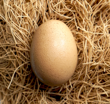 Easter organic closeup egg and nest brown background 스톡 콘텐츠