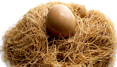 Easter organic egg and nest close up white background Foto de archivo - 111347431