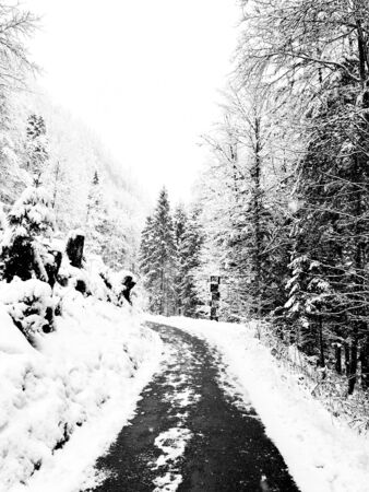 Walkway hiking epic mountain outdoor adventure to the old salt mine of Hallstatt pass the pine forest and Winter snow mountain landscape outdoor adventure, Austria monochrome