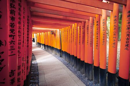 A walking path leads through a tunnel of Torii gates (Japanese red wooden gates) at Fushimi Inari Shrine.