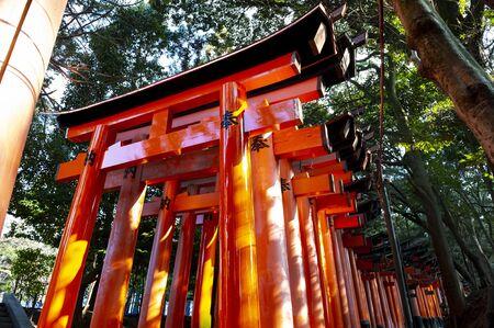 Red Torii Gates (Japanese wooden gates) in Fushimi Inari Shrine.