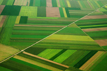 serbia: airview of field in Serbia