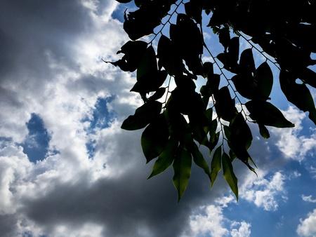 strom: The sky under the strom