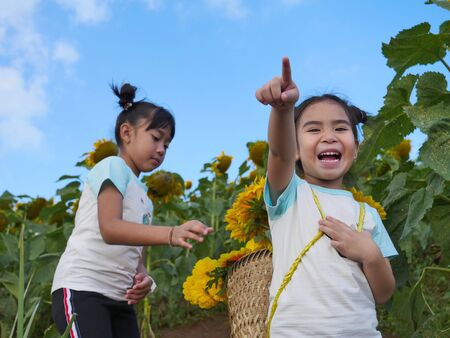 2 Asian girl carrying the basket of the sunflower in the garden to keep the flower