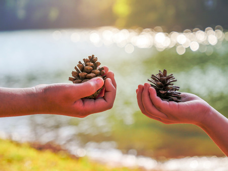 Two hands of the child exchange the plant seed in the national park with water background