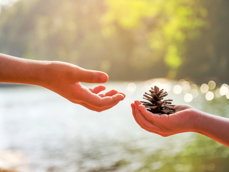 The hands of the child give the plant seed to the another guy in the national park with water background