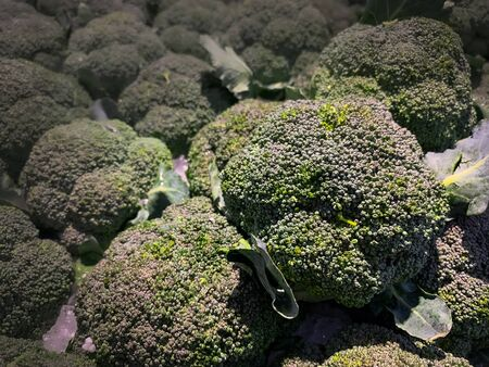 Green Bloccoli vegetable on the market shelf 스톡 콘텐츠