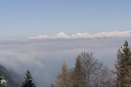 nebbia: Panorama