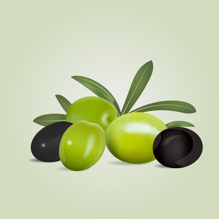 pitted: Black and green olives with leaves on olive colored background