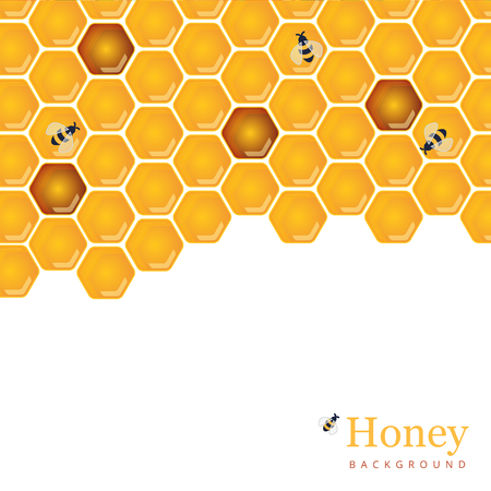 capping: Shiny amber honey comb and bees background design. Vector natural apiary and beekeeper template